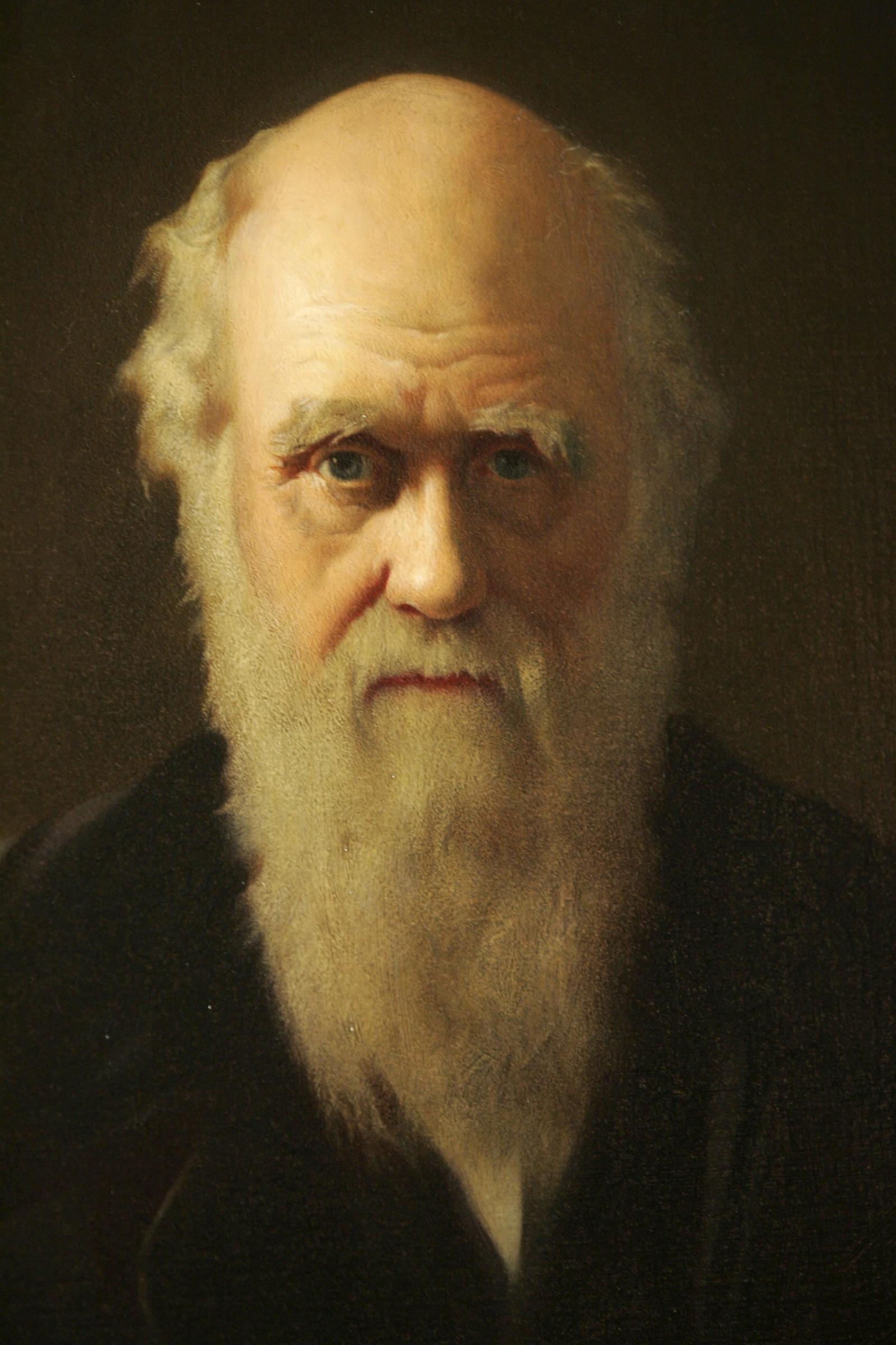 A portrait of Charles Darwin