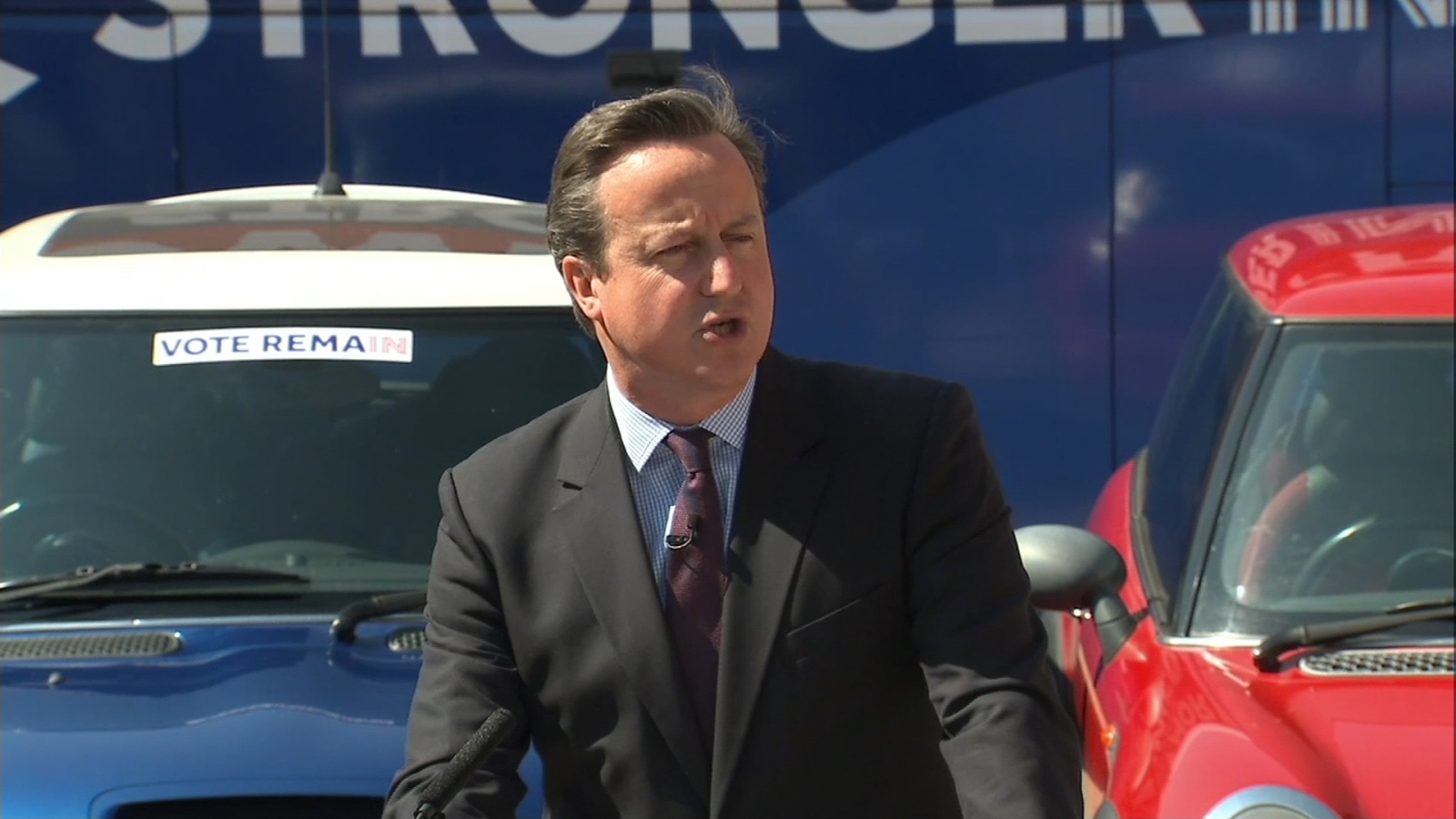 David Cameron attacks the Leave campaign