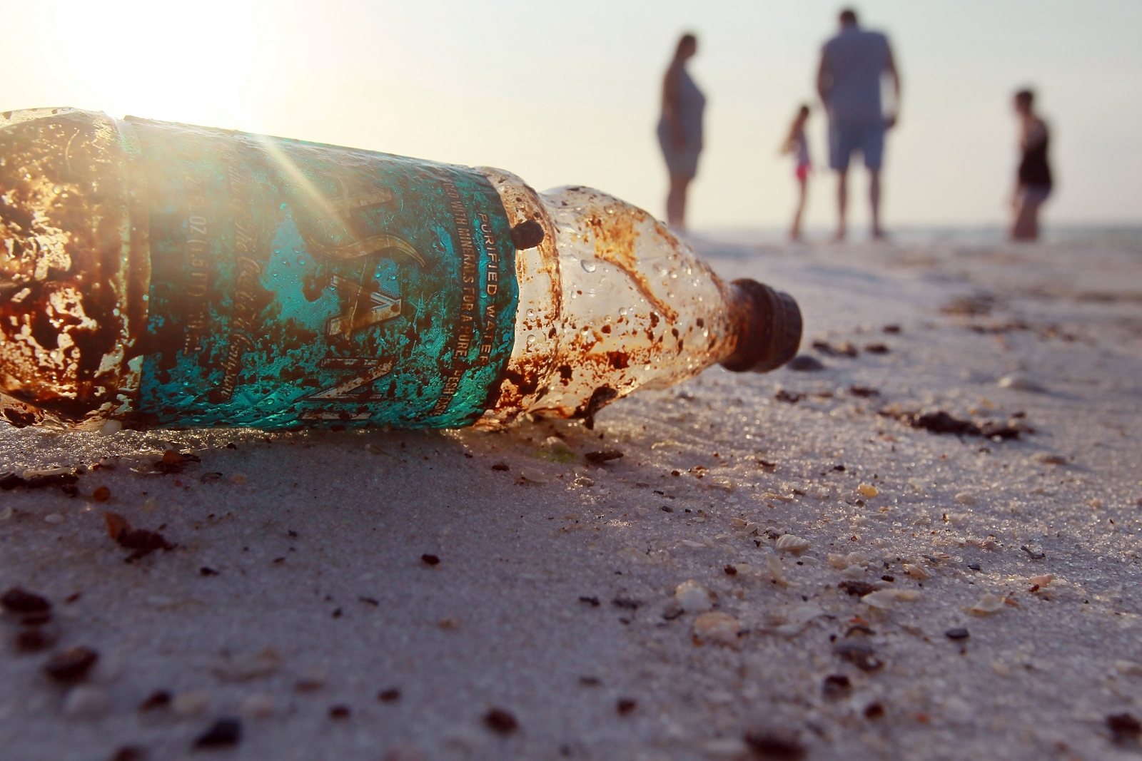 Florida Beach Pollution Facts
