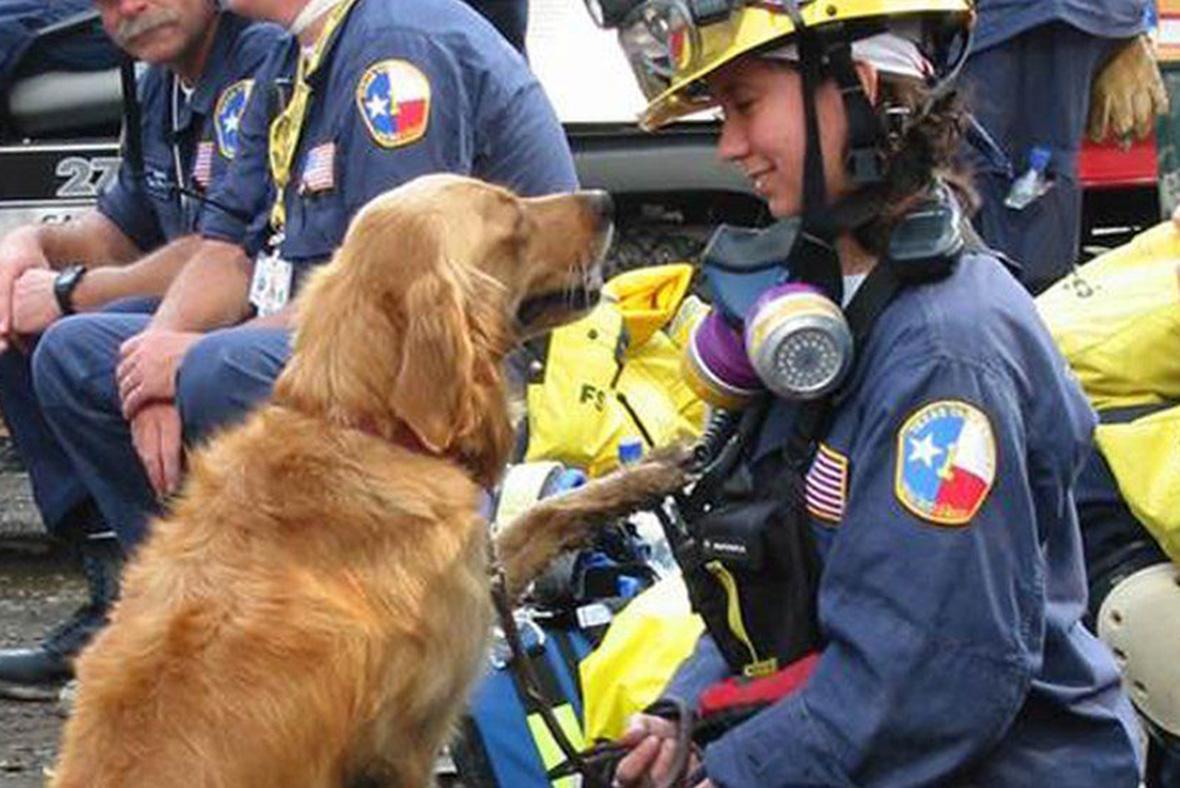 9/11 rescue dog