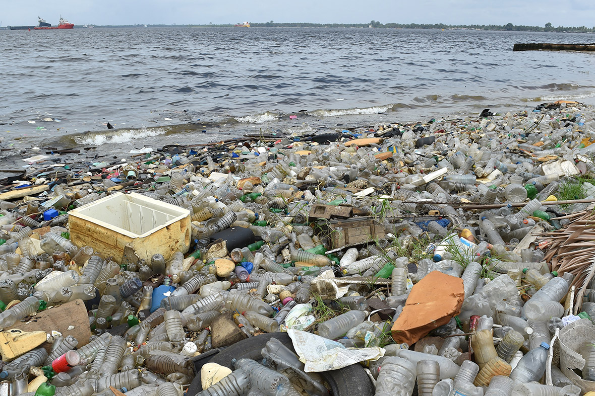 world oceans day 2016 five studies showing effect of plastic pollution on world 39 s seas. Black Bedroom Furniture Sets. Home Design Ideas