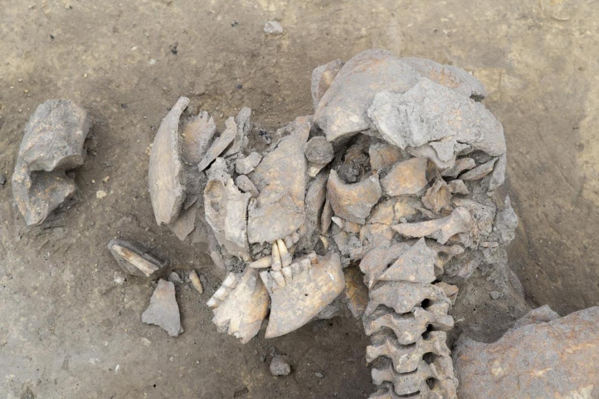 War Neolithic era