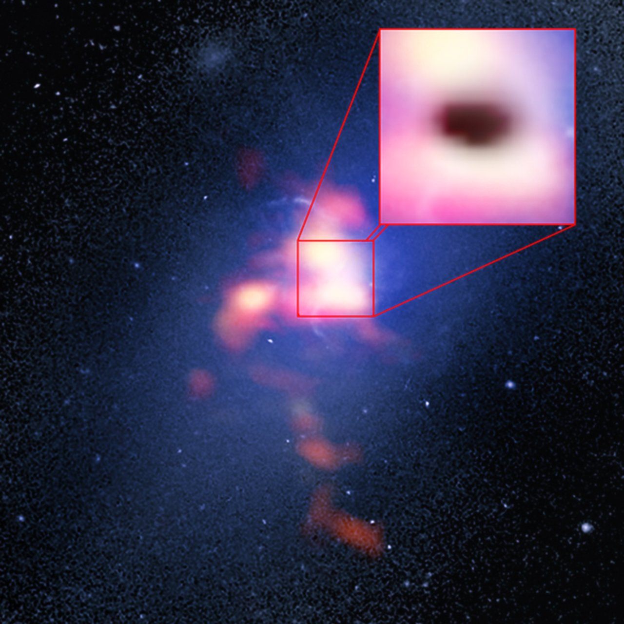 Abell 2597 Brightest Cluster Galaxy
