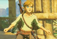 Legend of Zelda Breath Wild Link