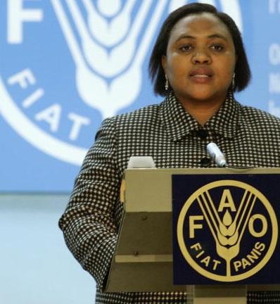 Angela Thoko Didiza