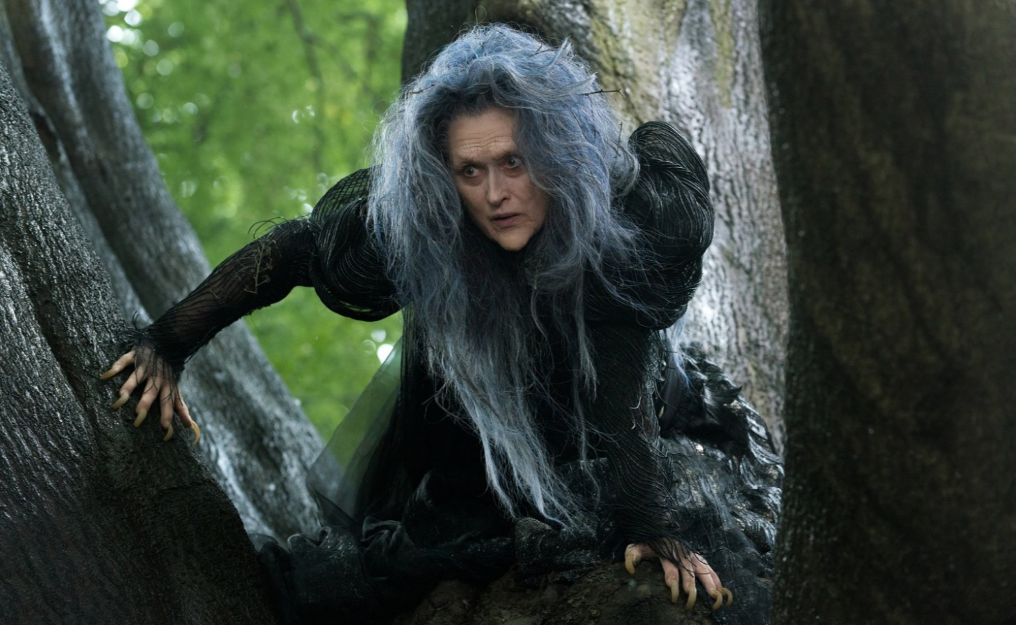 Meryl Streep in Into The Woods