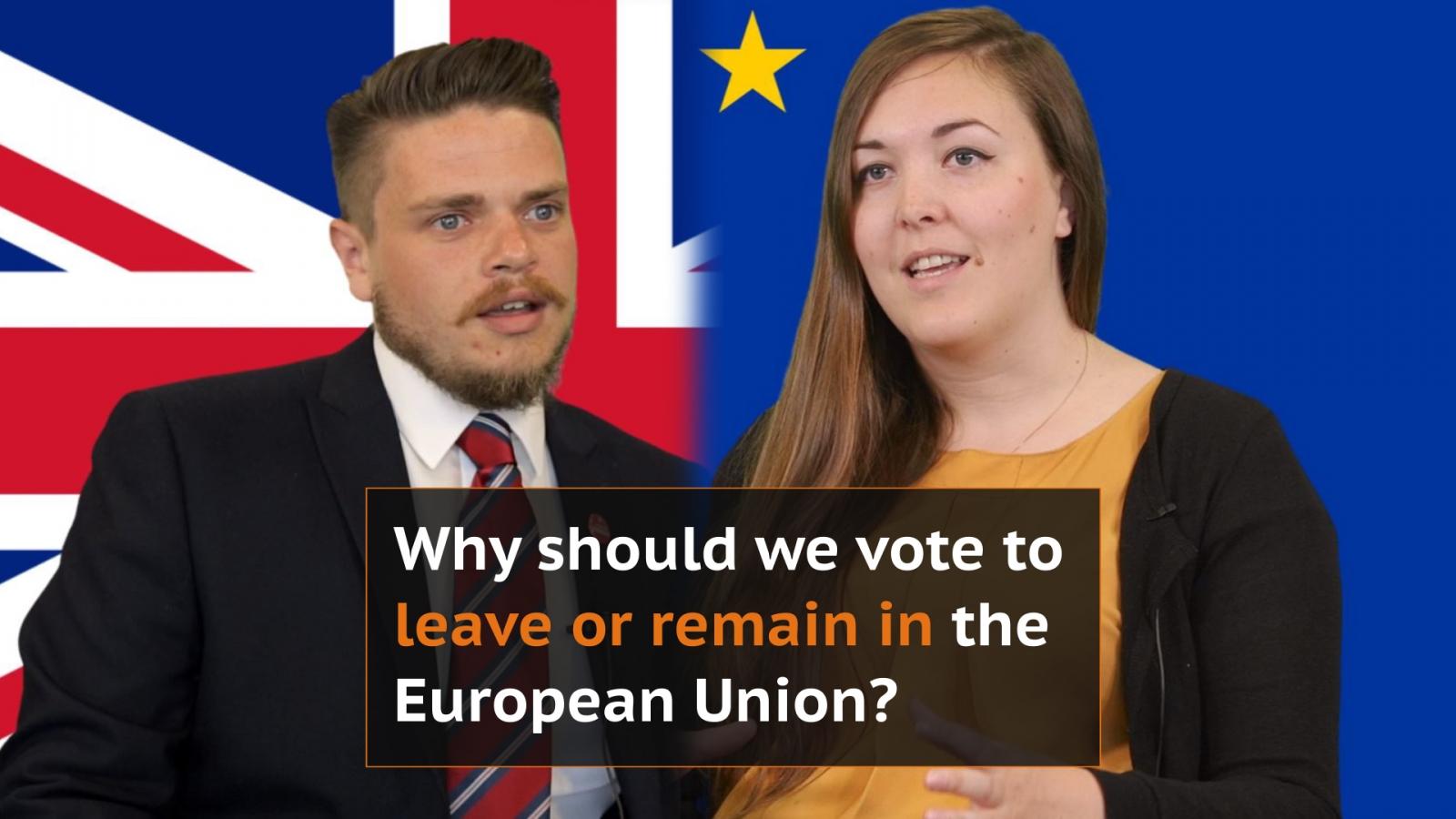EU Referendum in a nutshell
