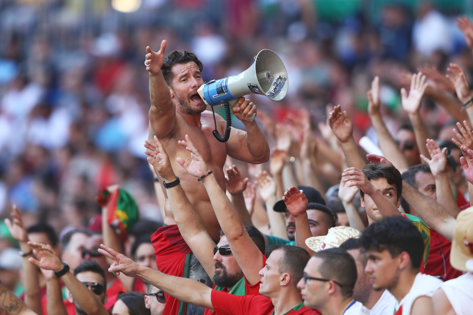 Portugal fans celebrate
