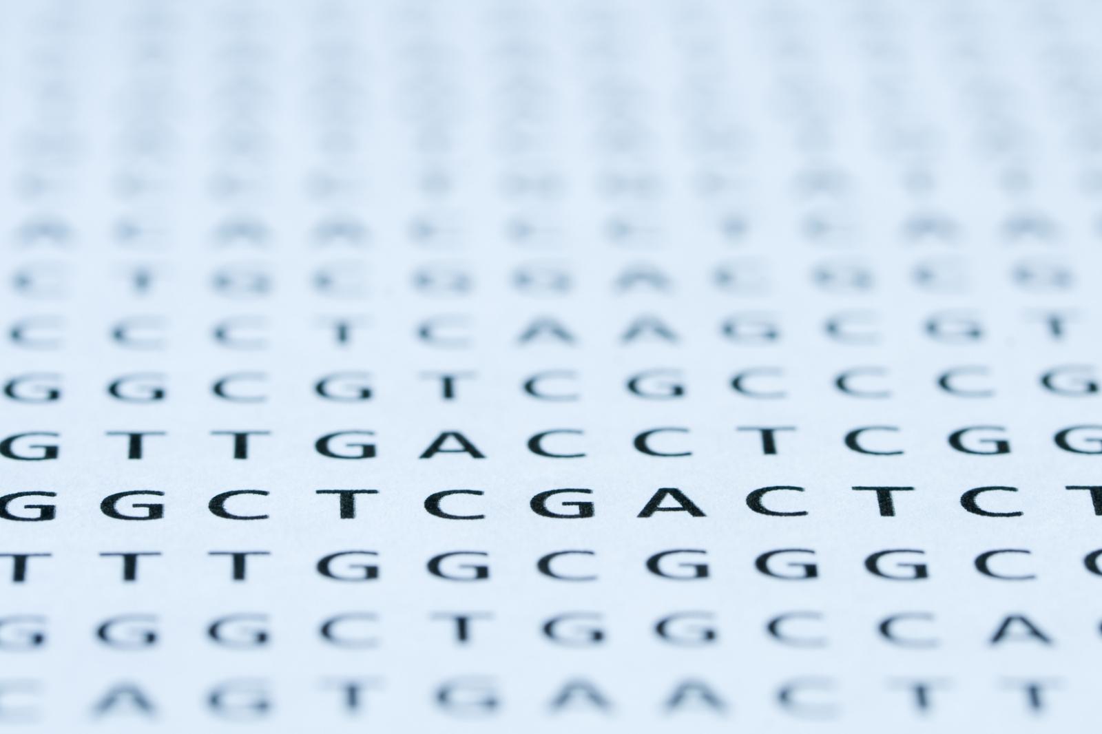 Huntington's disease nucleotide