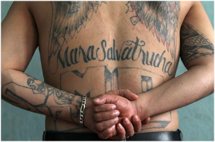 MS-13 gang member