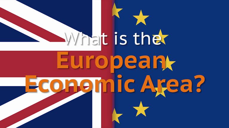 What is the European Economic Area?