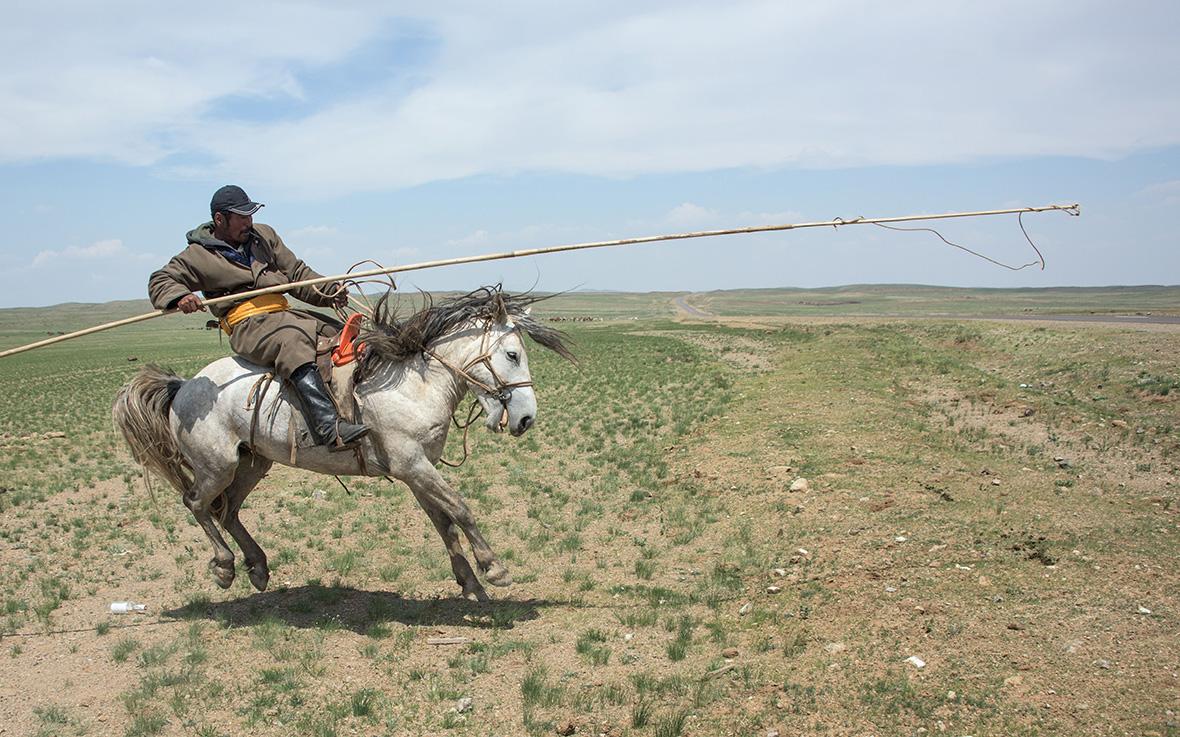 mongolia-election.jpg