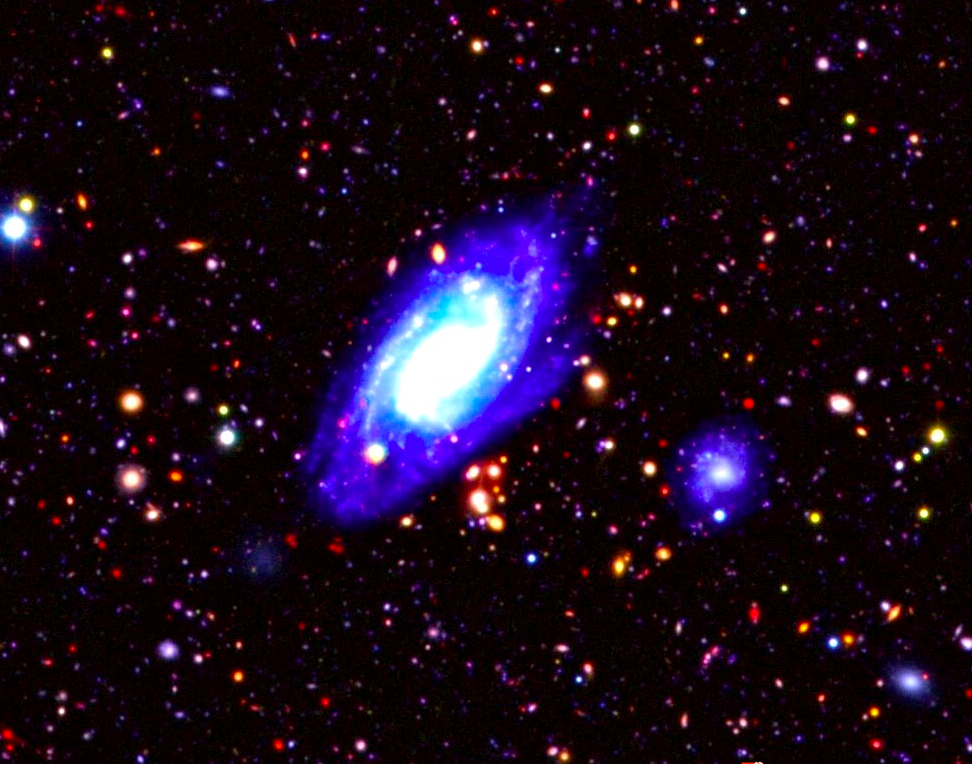 Galaxies of the distant universe