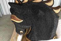 cocaine horse head auckland mexico