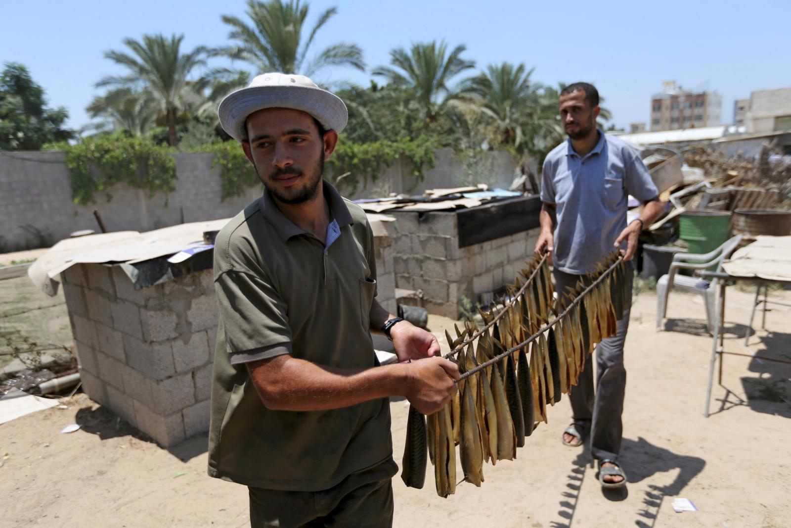Cool Gaza Eid Al-Fitr 2018 - eid-al-fitr  Pictures_749590 .jpg