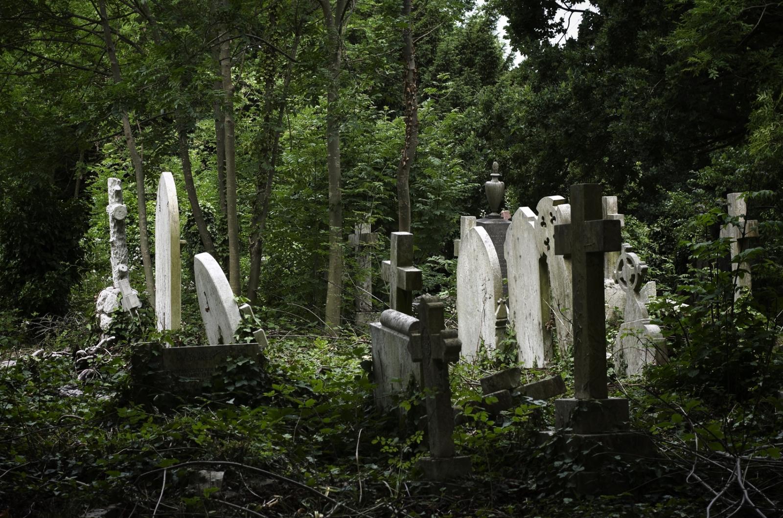 graveyard creepy spooky