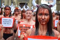 Animal rights activists in Pamplona