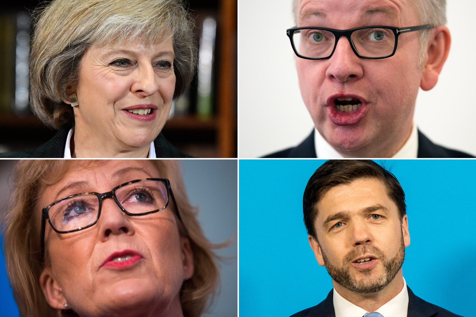 May Gove Crabb Leadsom Conservatives 2016
