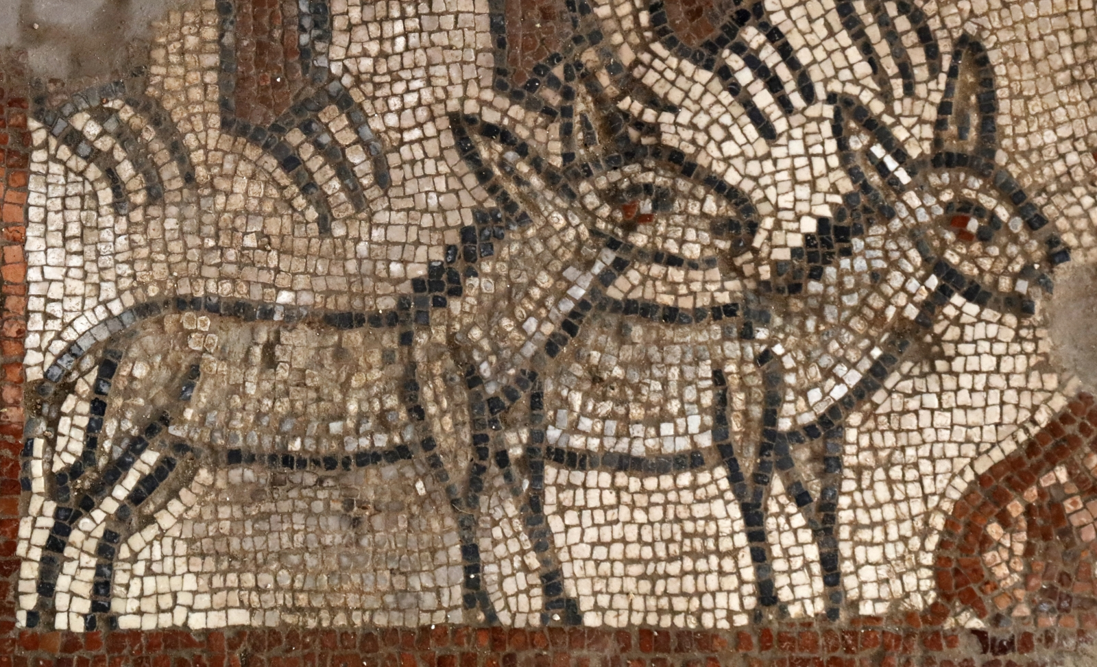 Mosaics Galilee