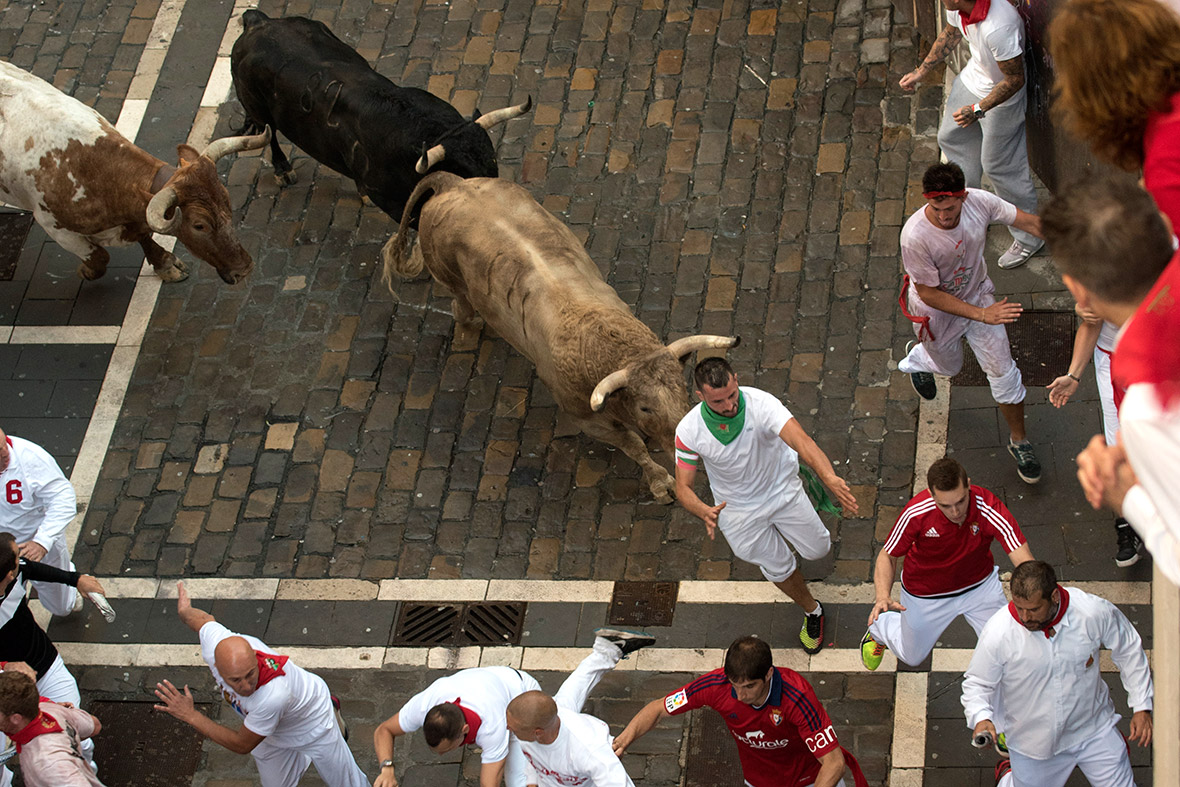 the pamplona bull run danger bull s Pamplona bull run official rules, safety, training advice running with the bulls in pamplona is not safe it is dangerous that's why people do it.