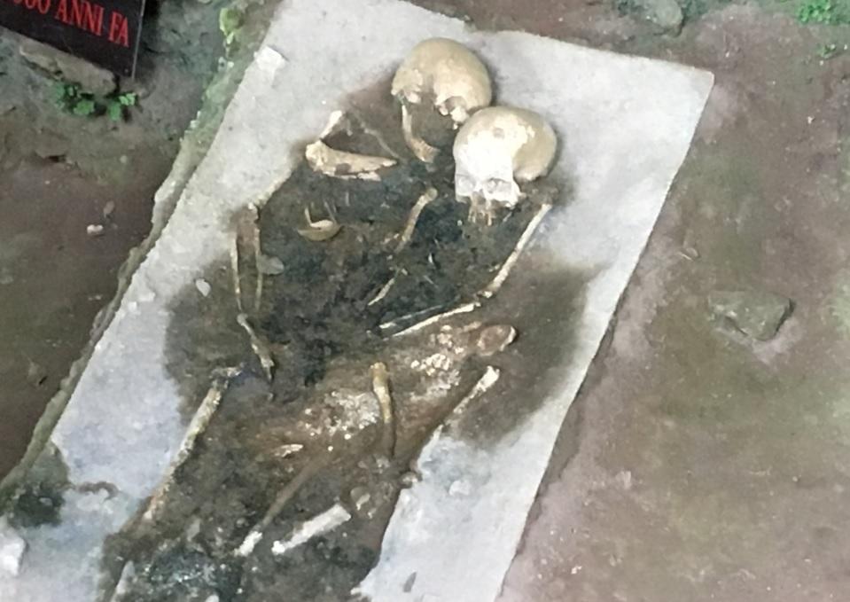 Grotta del Romito skull