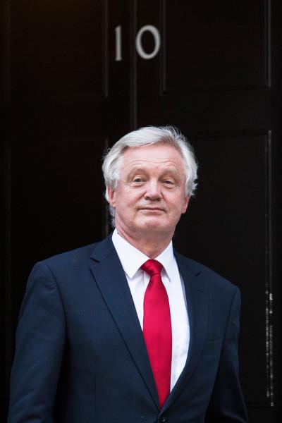 Cabinet David Davis