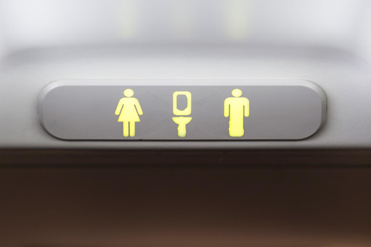 Toilet plane