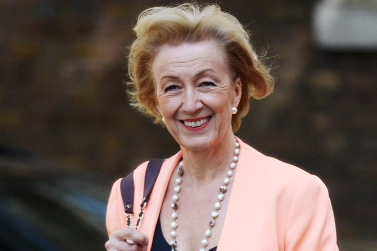 Cabinet: Andrea Leadsom