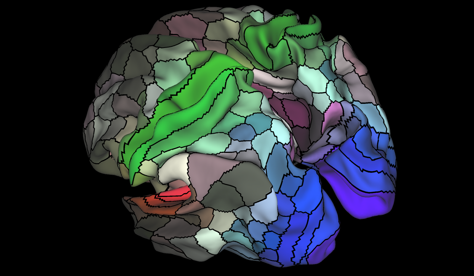 brain map structure