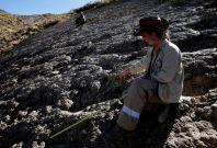 Bolivian dinosaur footprint