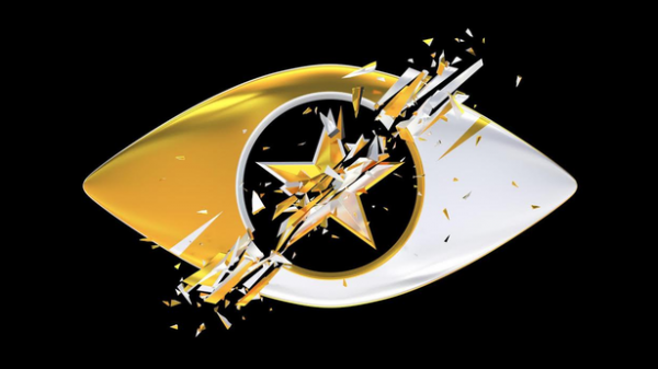 celebrity big brother housemates revealed as stars