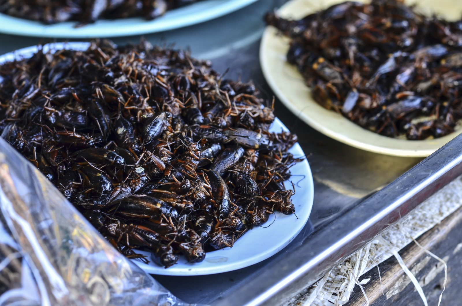 cockroach milk superfood
