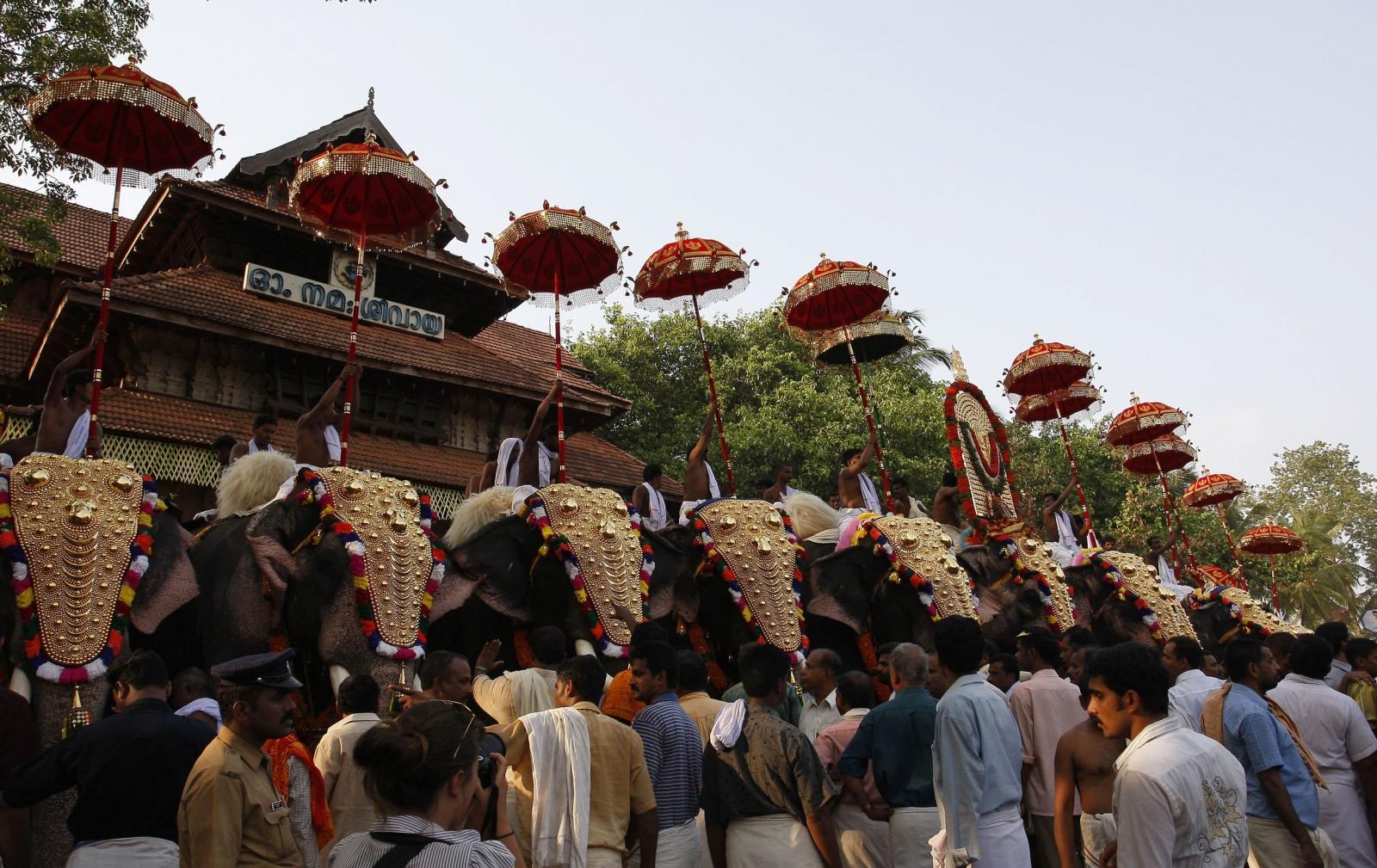 Temple elephants India