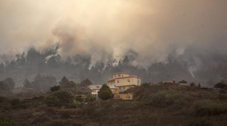 La Palma fire
