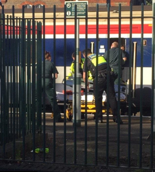 Man decapitated by speeding train