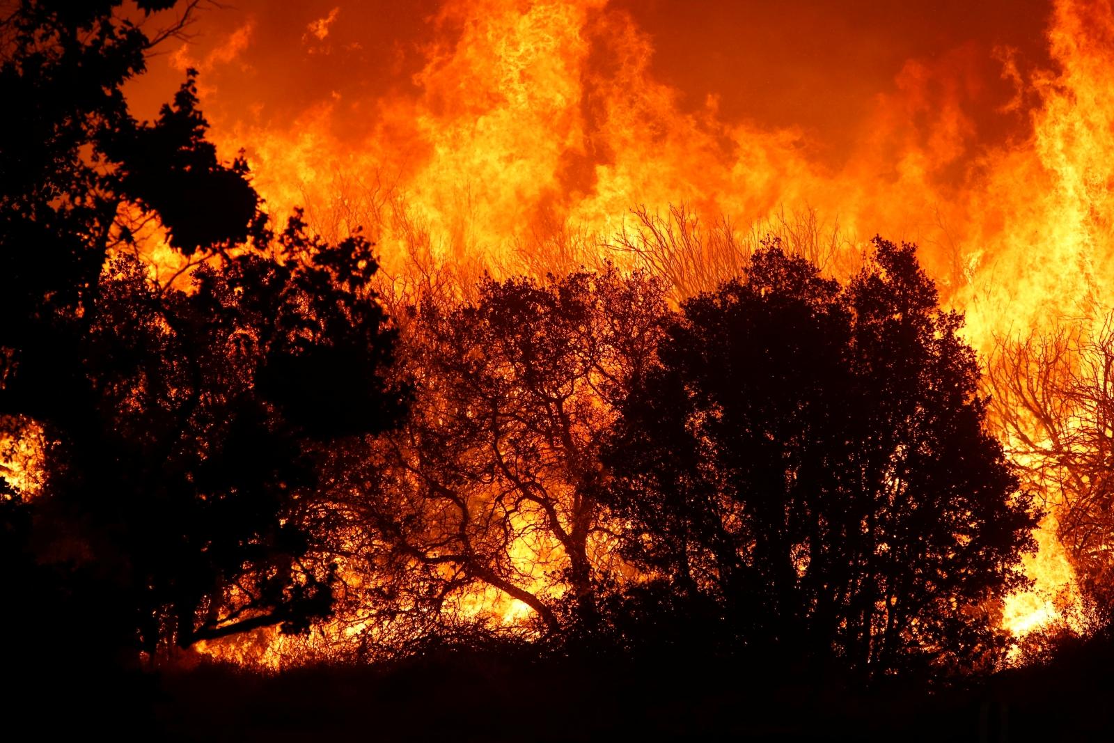 California's Pilot Fire