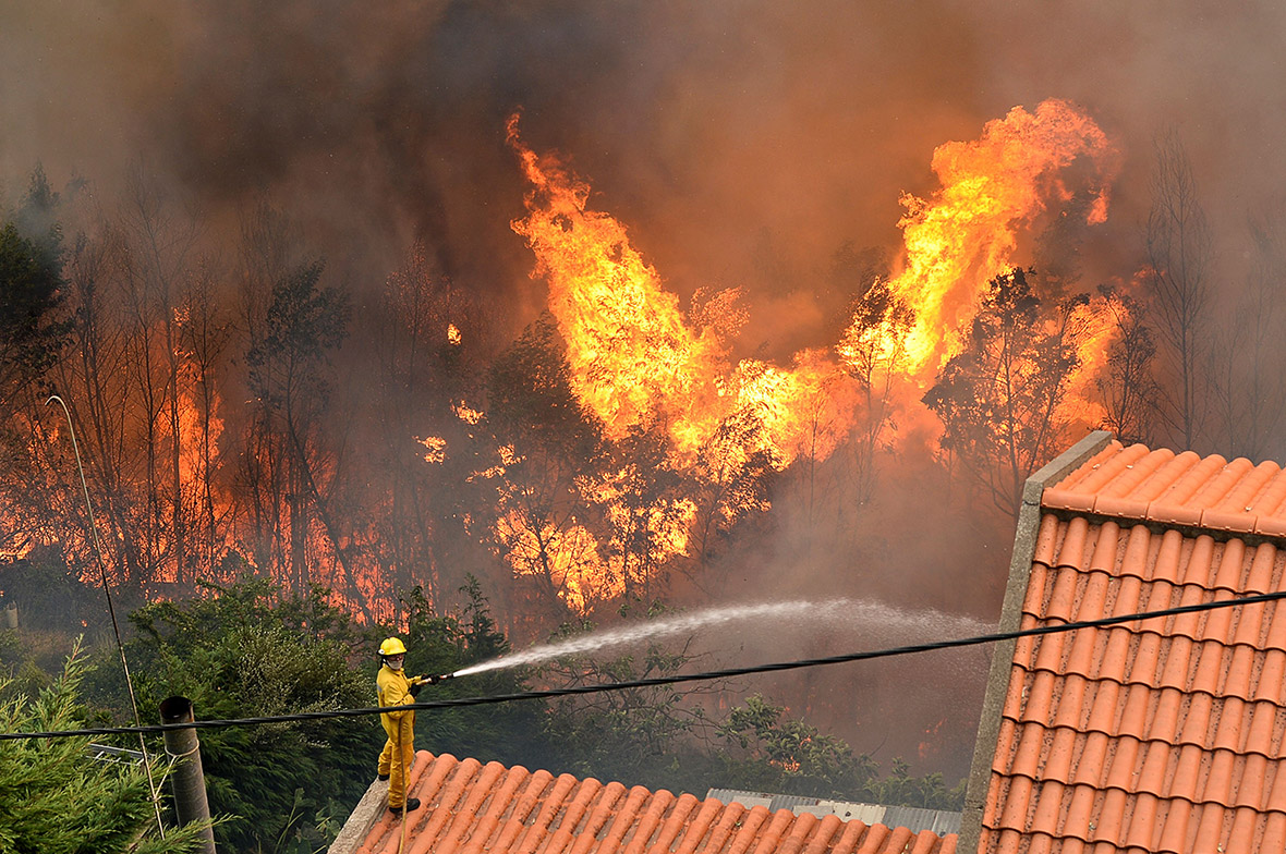 Portugal Wildfires Kill Three In Funchal Madeira And