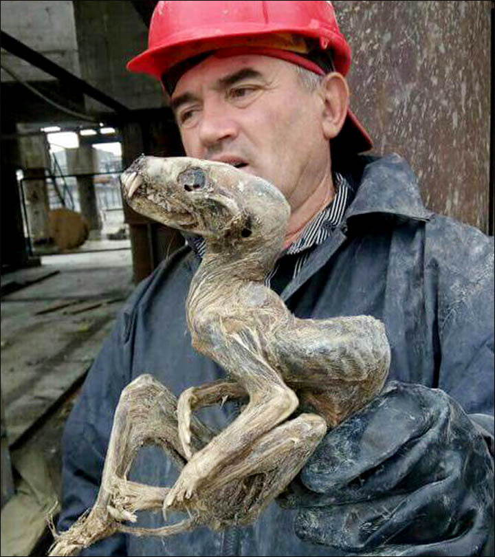 Siberia mummified monster