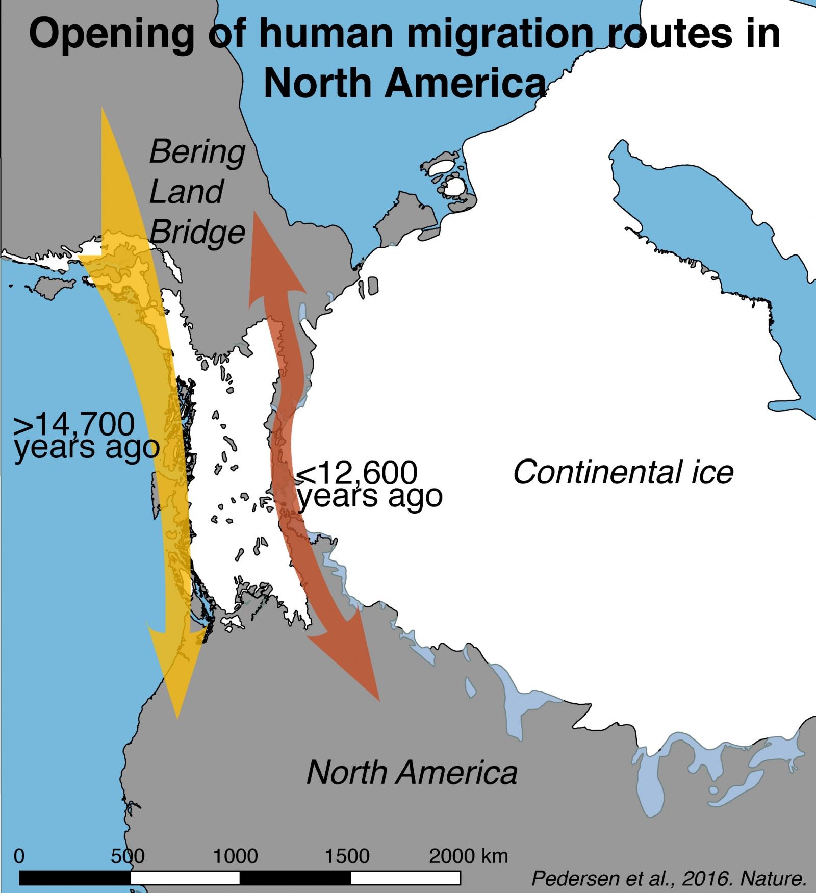 migration Americas