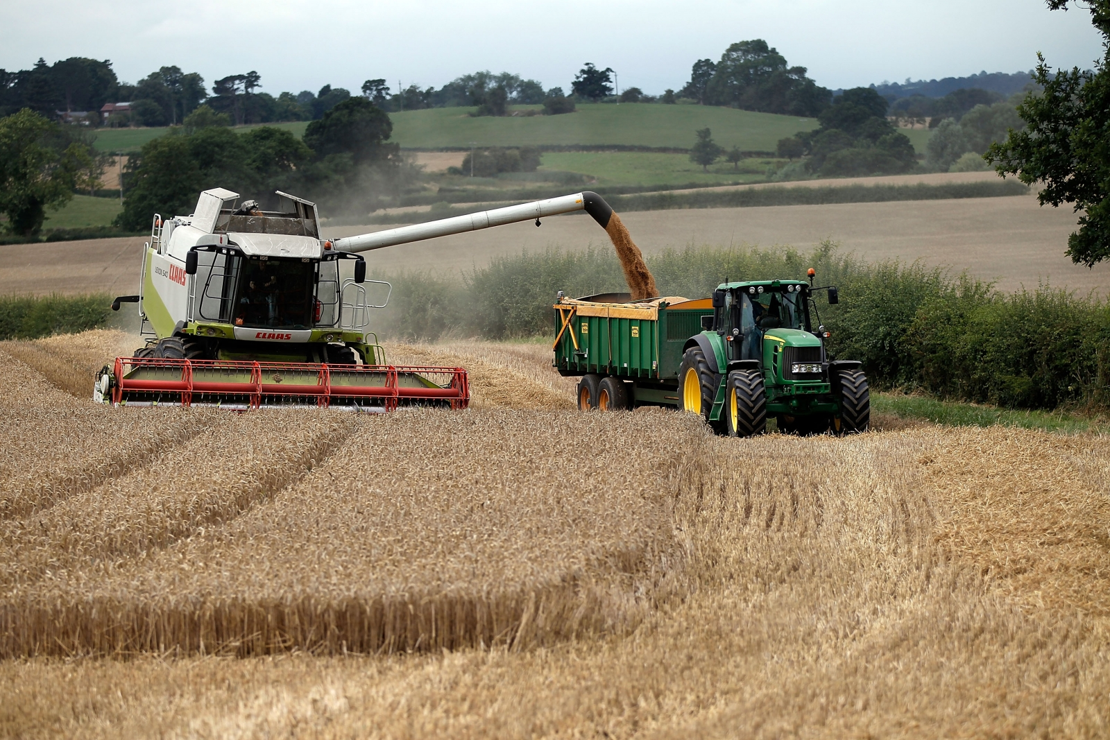 UK Farmland: Demand falls sharply amid Brexit uncertainty and low commodity prices, RICS/RAU report suggests