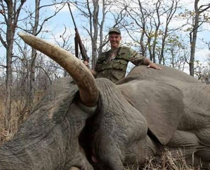Mr Evans Smiles As He Reclines Against The Lifeless Remains Of An Elephant Facebook