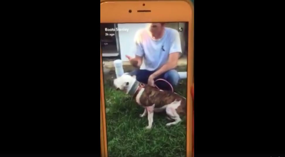 Screenshot dog torture video