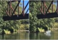 Fawley video of boy tossed off bridge