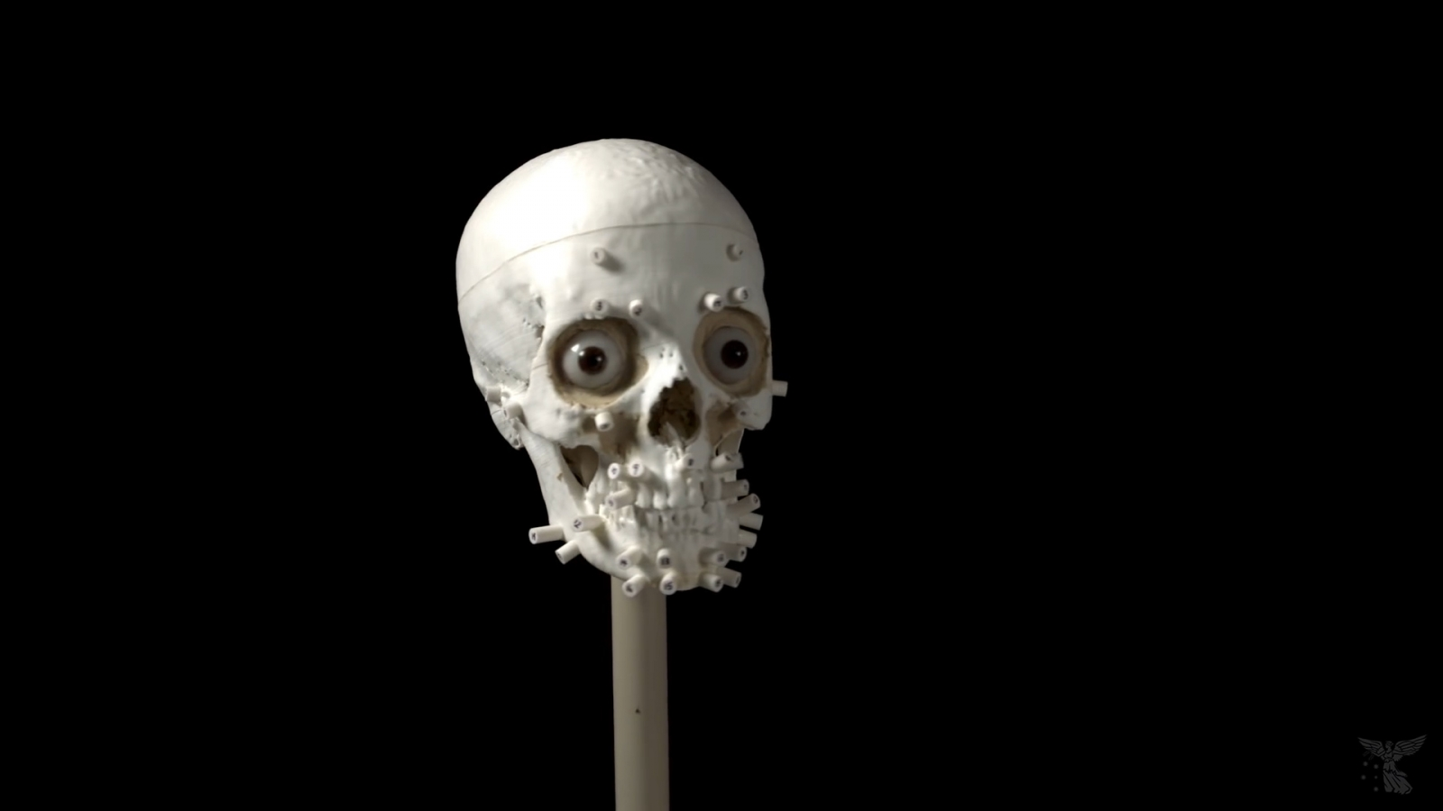 Skeleton reconstructed using 3D printing