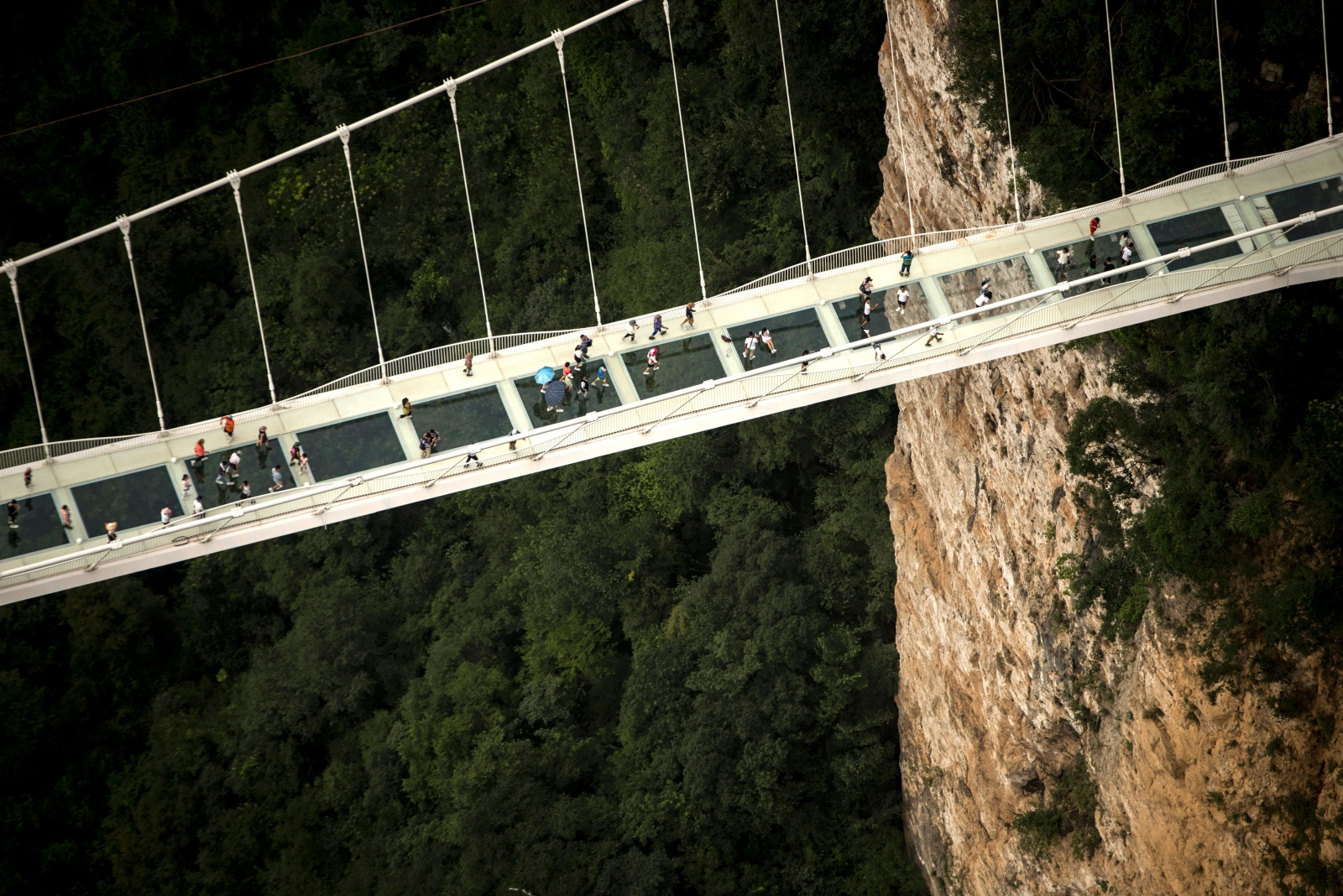 world's highest and longest glass-bottomed bridge