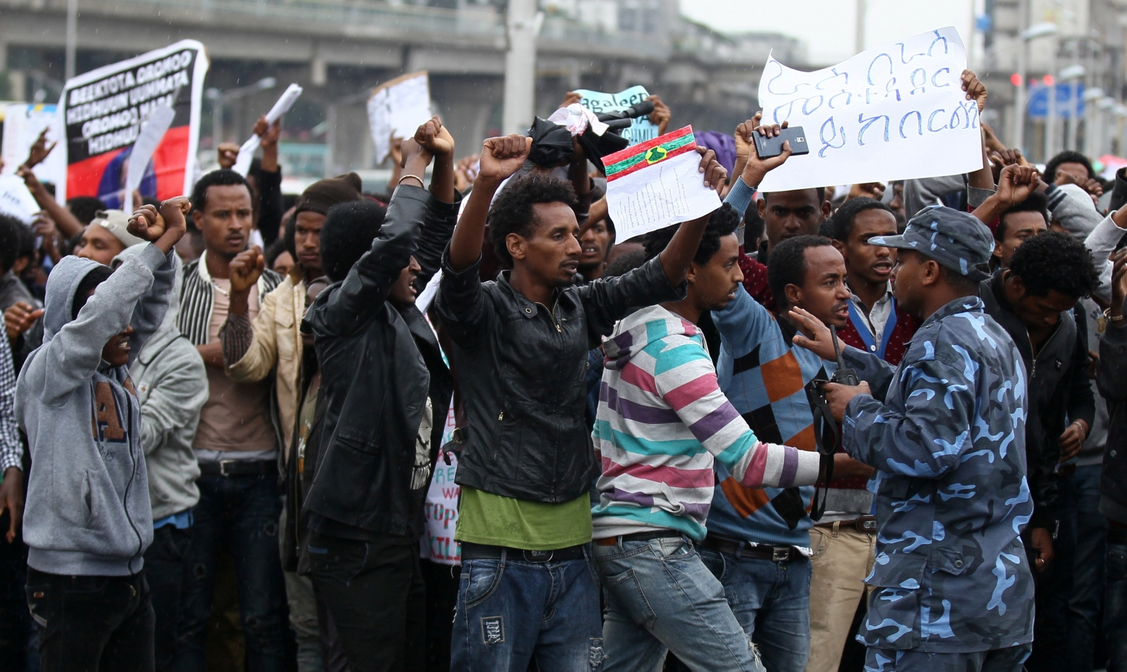 Addis Ababa protest