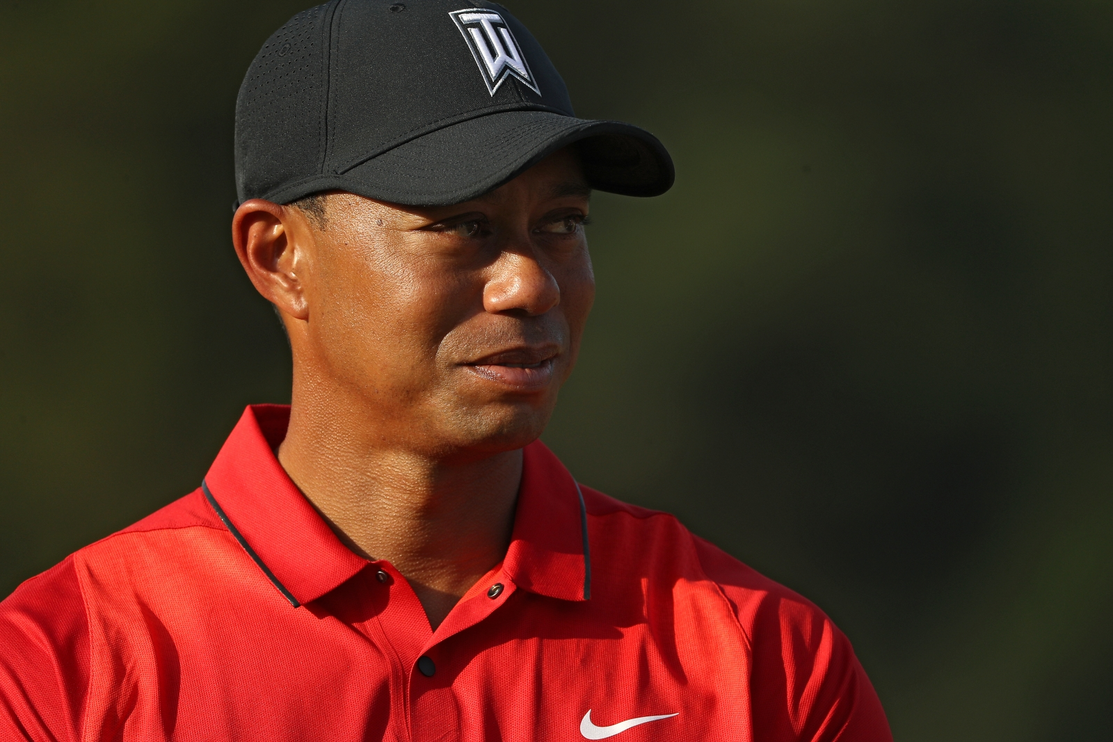tiger woods - photo #15
