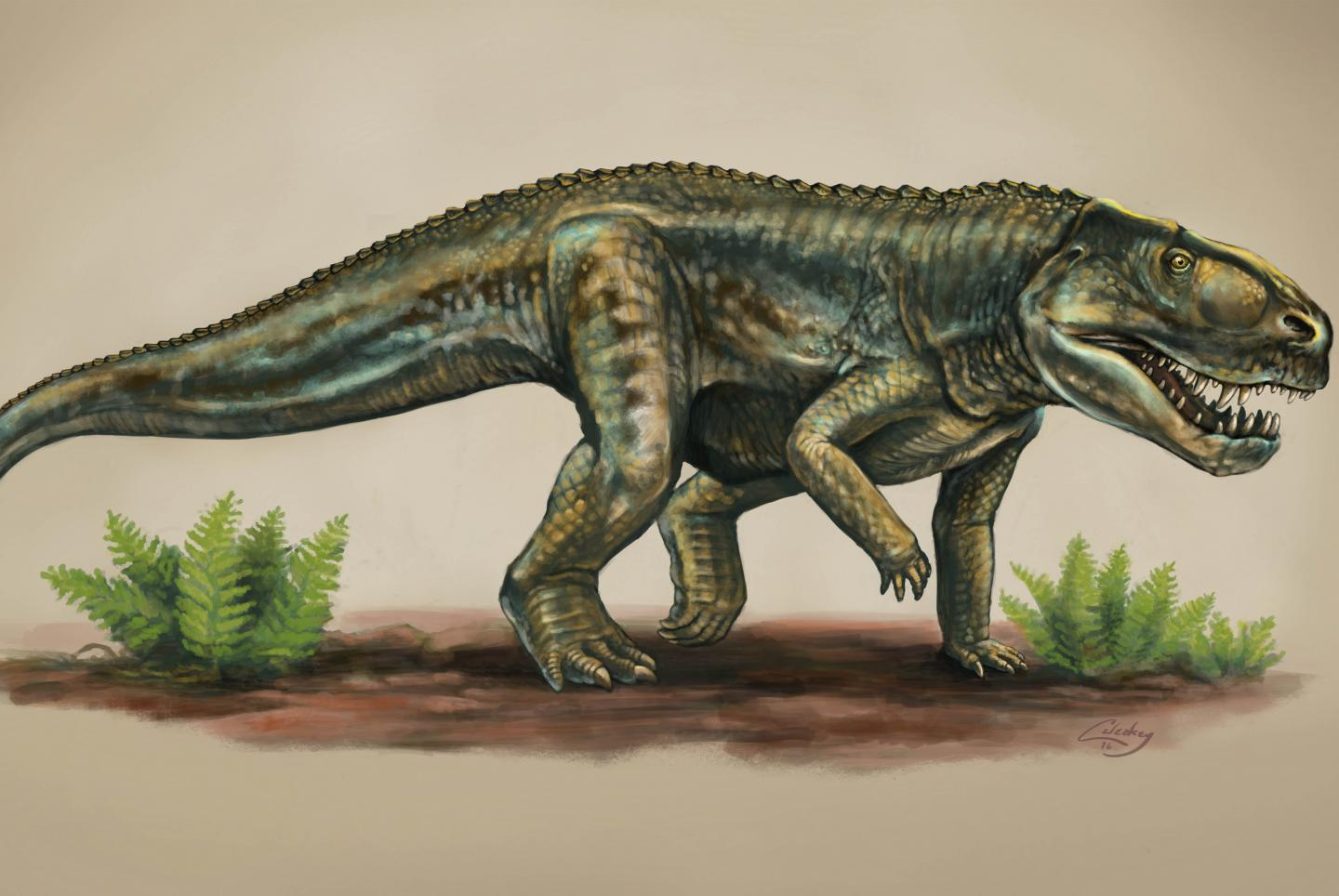 New reptile species from 212 million years ago identified