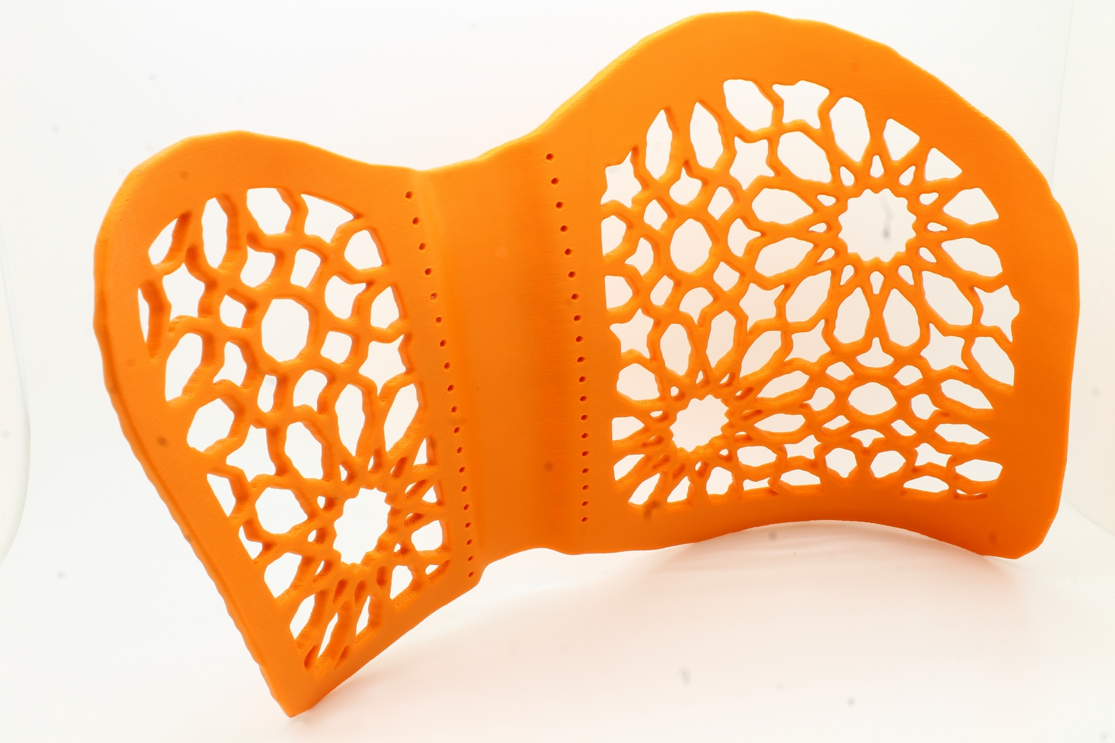 3D printed back brace