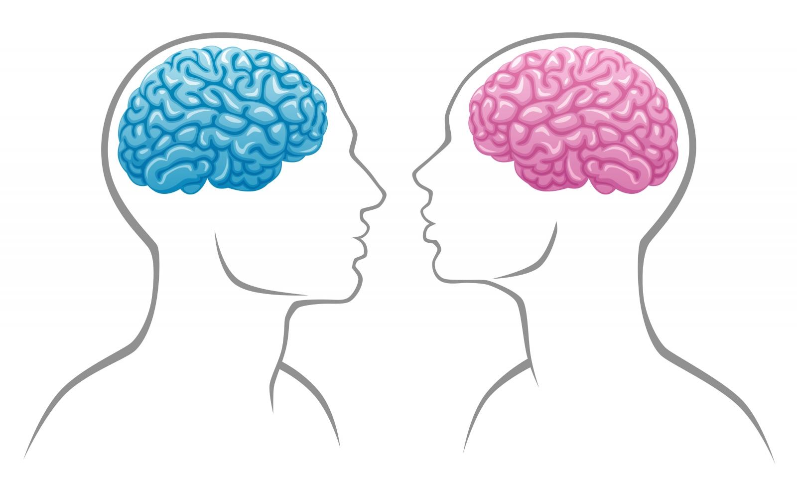 Best diet to improve brain function photo 2